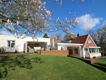 Thumbnail for sale in Rye Road, Wittersham, Kent