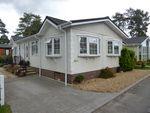 Thumbnail for sale in Lone Pine Park, Ferndown, Dorset, 8Nf