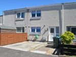 Thumbnail to rent in Nairn Court, Falkirk