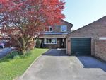Thumbnail for sale in Winters Close, Holbury, Southampton