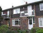 Thumbnail to rent in Camellia Place, Whitton, Twickenham