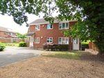 Thumbnail to rent in Coracle Close, Warsash, Southampton
