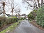 Thumbnail to rent in Beaulieu Gardens, Winchmore Hill