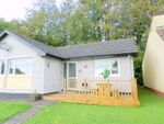 Thumbnail to rent in Lamerton Bungalow, Honicombe Manor, Callington