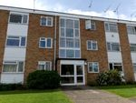 Thumbnail to rent in Haig Court, Old Moulsham, Chelmsford