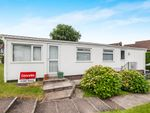 Thumbnail to rent in Summerlands Court, Liverton, Newton Abbot