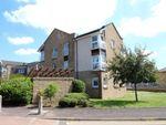 Thumbnail to rent in Woodburn Park, Hamilton, South Lanarkshire