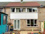 Thumbnail to rent in Raeburn Road, Sheffield