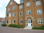 Thumbnail to rent in Lapwing View, Horbury