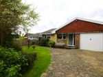 Thumbnail for sale in Maple Walk, Bexhill-On-Sea, East Sussex