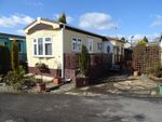 Thumbnail to rent in St. Christophers Park, Ellistown, Leicestershire