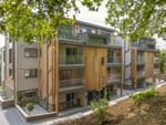 Thumbnail to rent in Tremorvah Crescent, Truro