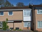 Thumbnail to rent in Woodfield Close, Exmouth