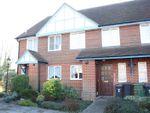 Thumbnail for sale in Rareridge Lane, Bishops Waltham, Southampton