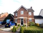 Thumbnail for sale in Guernsey Way, Braintree