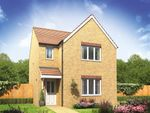 "Thumbnail to rent in ""The Hatfield"" at Lundhill Road, Wombwell, Barnsley"