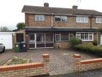 Thumbnail to rent in Patmore Link Road, Hemel Hempstead
