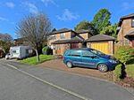 Thumbnail for sale in Beechwood Drive, Llantwit Fardre, Pontypridd