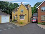 Thumbnail to rent in Collie Drive, Kingsnorth, Ashford