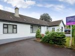 Thumbnail to rent in Ardmore Road, Holywood