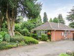 Thumbnail to rent in Wood Road, Tettenhall, Wolverhampton