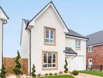 "Thumbnail to rent in ""Dunbar"" at Auchinleck Road, Glasgow"