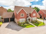 Thumbnail for sale in Surrey View, East Grinstead