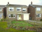 Thumbnail for sale in Melanie Close, Glossop, Derbyshire