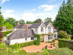 Thumbnail for sale in The Feld, London Road, East Grinstead, West Sussex