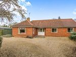 Thumbnail for sale in North Elmham, East Dereham, Norfolk