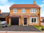 Thumbnail to rent in Kirkwall Walk, Eaglescliffe, Stockton-On-Tees