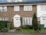 Thumbnail to rent in Brockenhurst, West Molesey