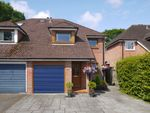 Thumbnail to rent in Gold Mead Close, Lymington, Hampshire