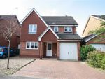 Thumbnail to rent in Ascott Close, Beverley