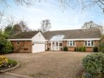 Thumbnail for sale in The Ridings, Rothley, Leicester