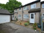 Thumbnail for sale in Persardi Court, Holt Drive, Colchester, Essex