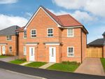 "Thumbnail for sale in ""Palmerston"" at Wheatley Hall Road, Doncaster"