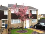 Thumbnail for sale in Elm Tree Drive, Bassingbourn, Royston