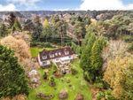 Thumbnail for sale in Avon Castle Drive, Avon Castle, Ringwood, Hampshire