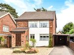 Thumbnail for sale in Oakfield Road, Blackwater, Surrey