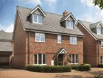 Thumbnail for sale in Oak Park, Longmoor Road, Liphook, Hampshire