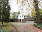 Thumbnail to rent in Dennis Lane, Stanmore