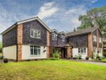 Thumbnail to rent in Frog Lane, Mapledurwell, Basingstoke