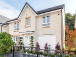 "Thumbnail to rent in ""Corgarff"" at Westbarr Drive, Coatbridge"