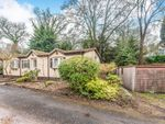 Thumbnail for sale in Heatherfield, Pathfinder Village, Exeter