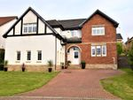 Thumbnail for sale in Snead View, Motherwell