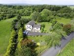 Thumbnail to rent in Crossgar Road East, Crossgar, Downpatrick, County Down