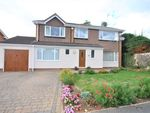 Thumbnail for sale in York Road, Tickhill, Doncaster