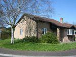Thumbnail for sale in Milton Close, Boverton, Llantwit Major