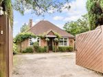 Thumbnail for sale in Horsham Road, Capel, Dorking, Surrey